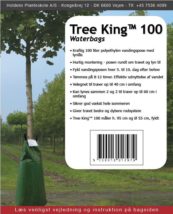 TreeKing 100